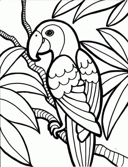 Aves para colorear y descargar