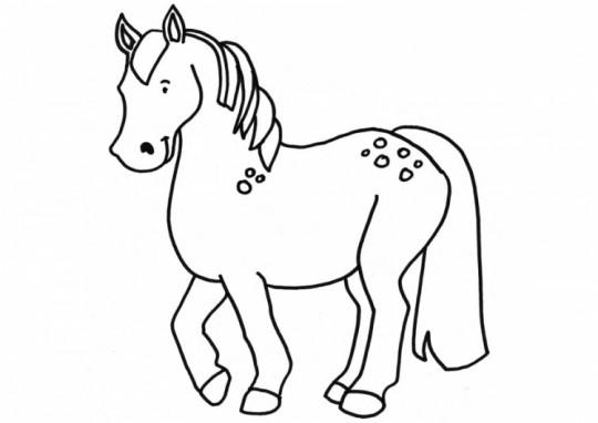 Caballos faciles de dibujar - Imagui