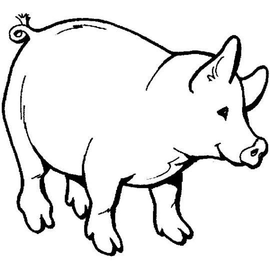 Animales para colorear  Imagenes para dibujar