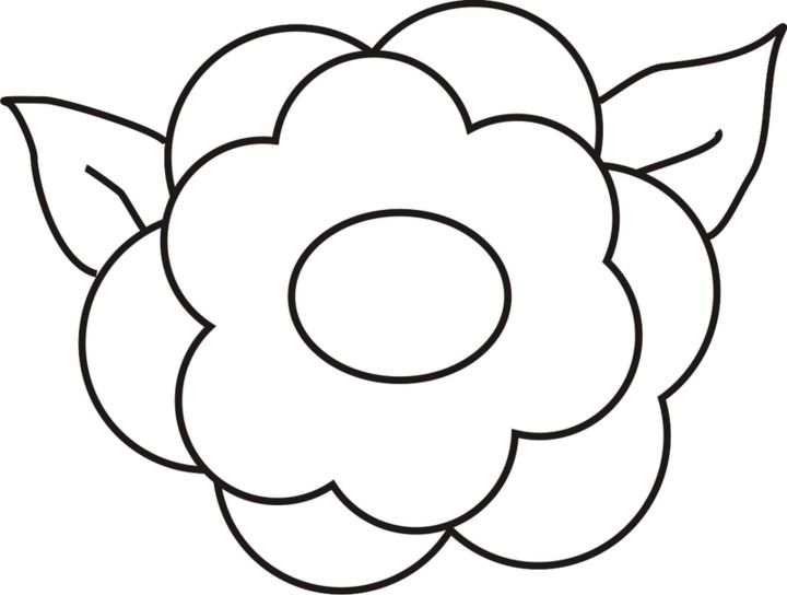 Flores para dibujar for Plantas para dibujar