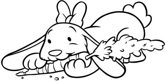 Conejos colorear