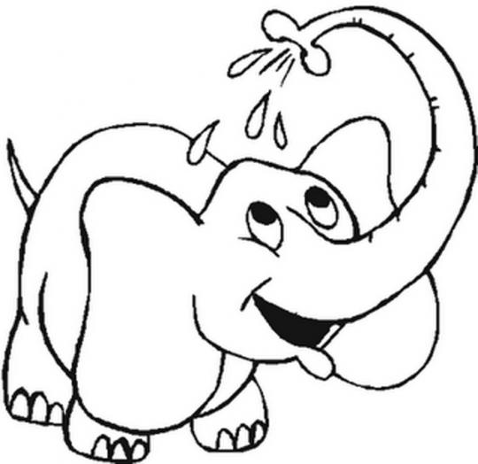 Dibujos-de-animales-para- ...