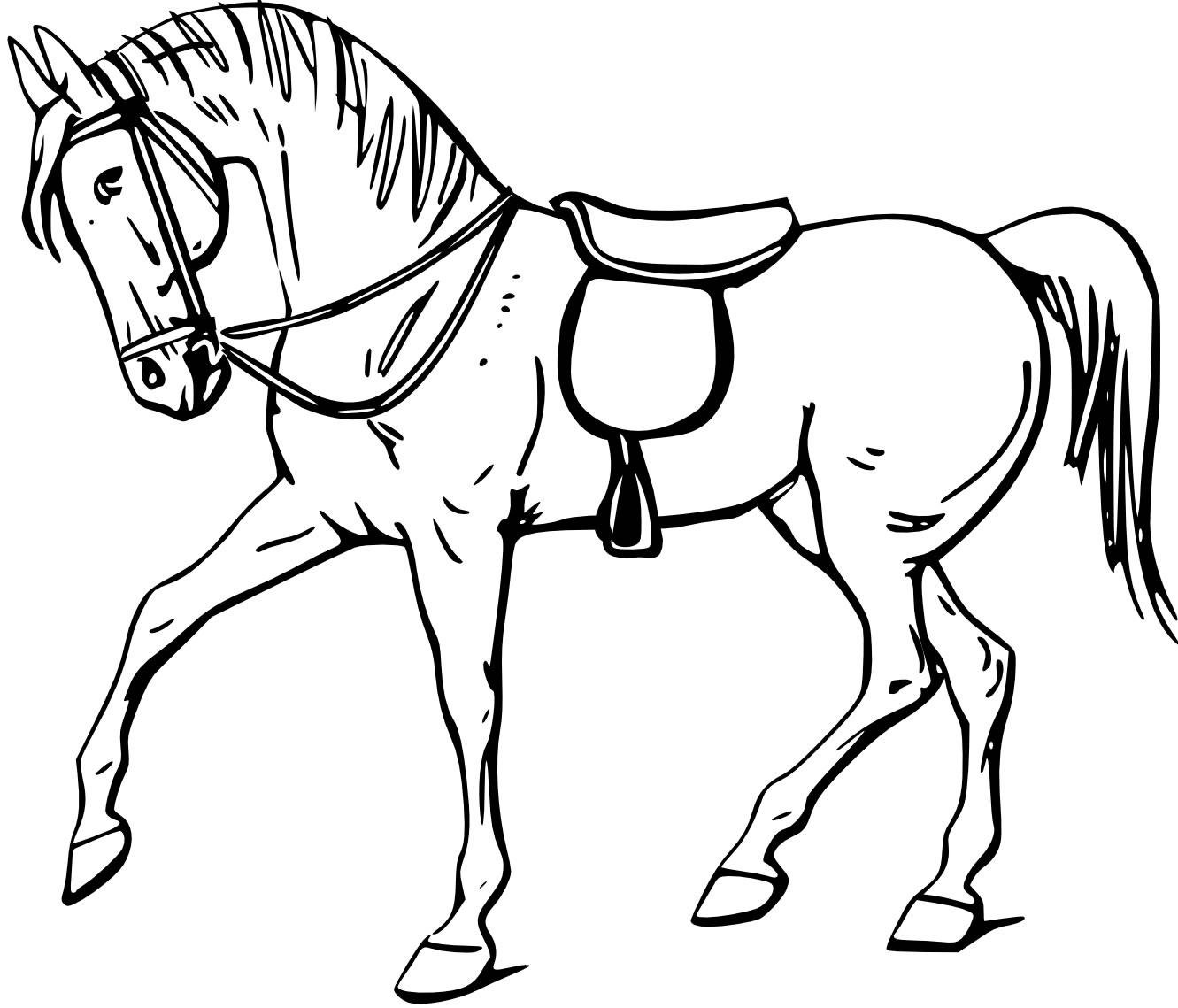 Dibujos de caballos para colorear.