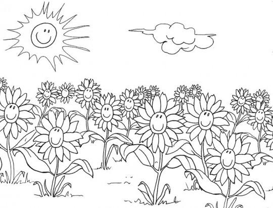 Dibujos de flores para colorear for Disegnare un giardino