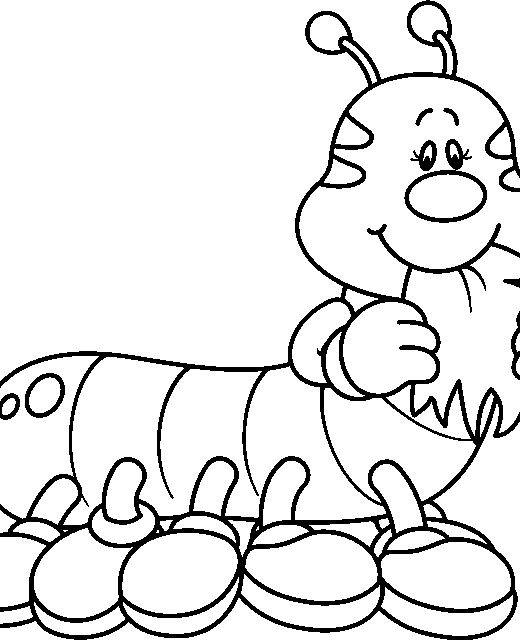 Dibujos para colorear orugas - Imagui