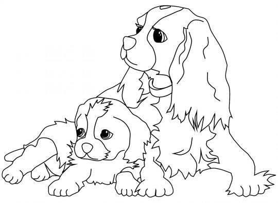 Dibujos para colorear en línea perros