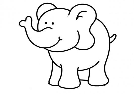 Elefante para colorear  Imagenes para dibujar