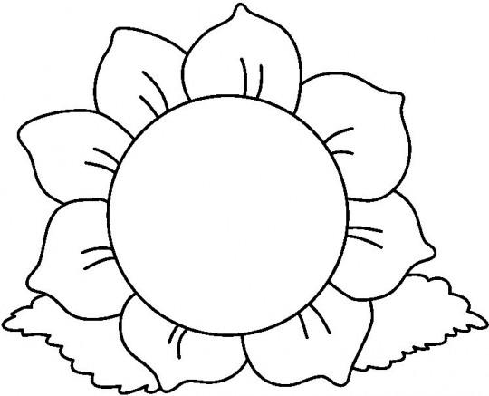 Como se dibuja una flor - Imagui