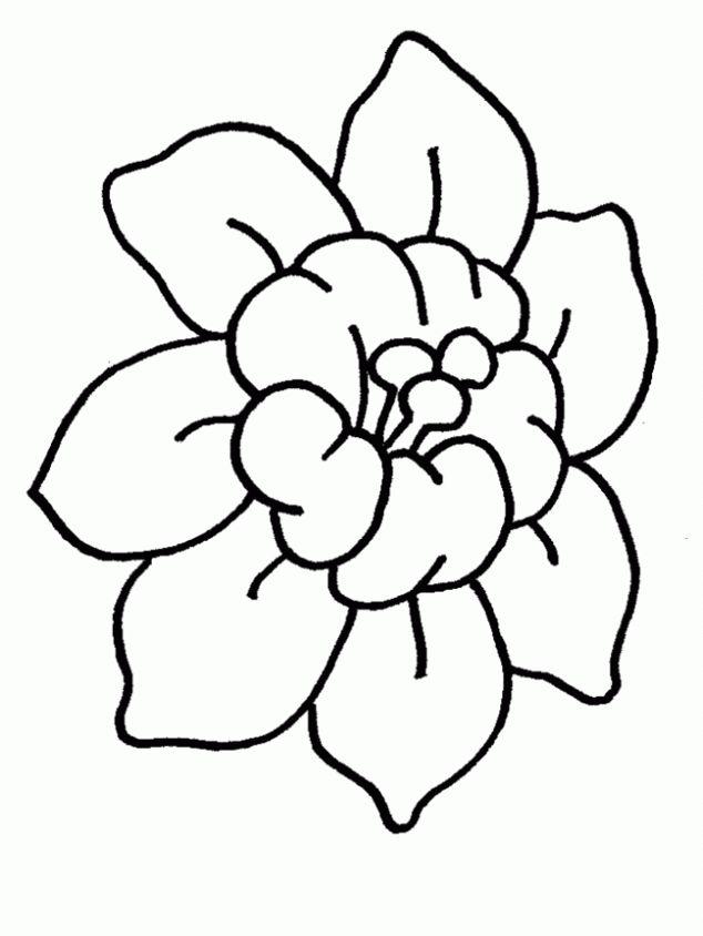 Como Dibujar Una Flor Sencilla | www.picswe.com