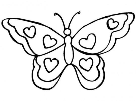 Imagenes de mariposas para colorear - Plantillas de mariposas para pintar ...
