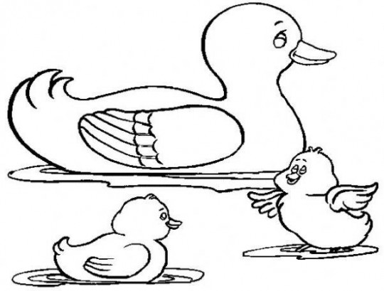 Imagenes para colorear de animales