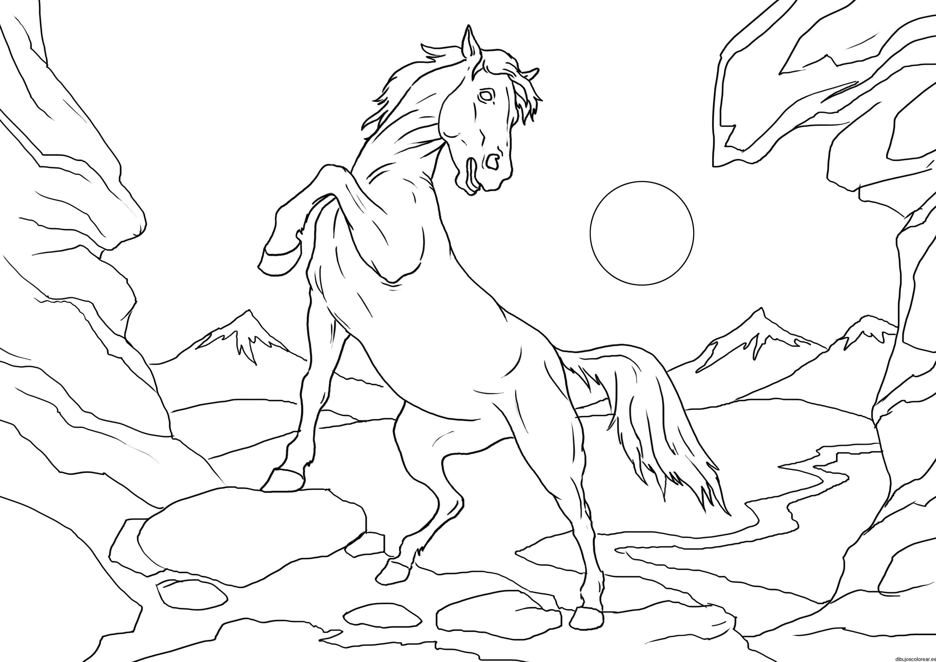 Imagenes de caballos para colorear y dibujar - Pasos para pintar ...