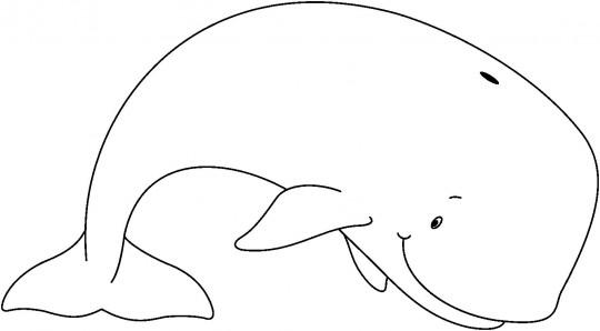 Animales para dibujar ballena