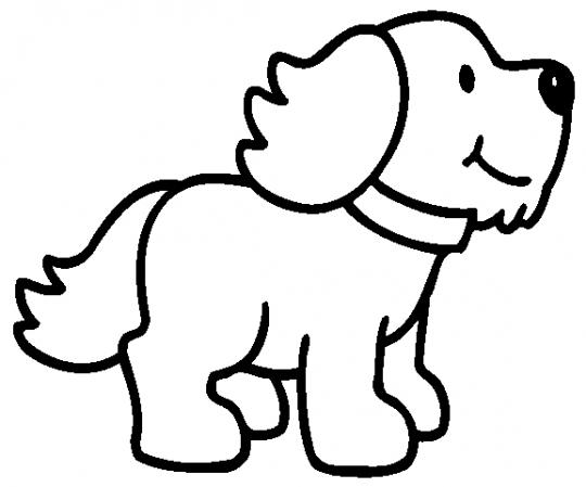 Animales para dibujar.