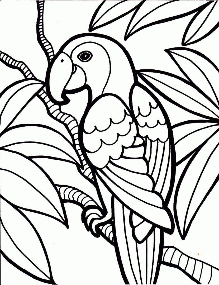 Famoso Pájaros Para Colorear Para Colorear Embellecimiento - Dibujos ...