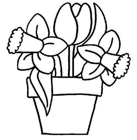 Flores para dibujar for Plantas ornamentales para colorear