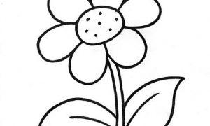 Flores Infantiles Para Pintar Flores Imagenes