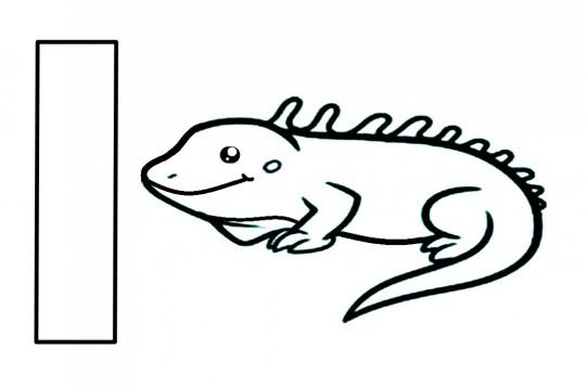 Imagenes De Iguanas Para Colorear Facil Dibujos Del Amatcardco