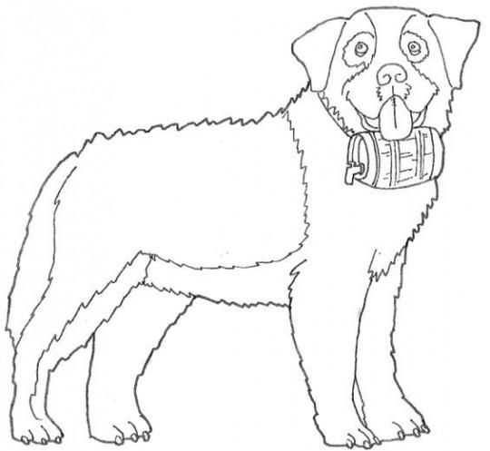 Dibujos de perros para colorear san bernardo