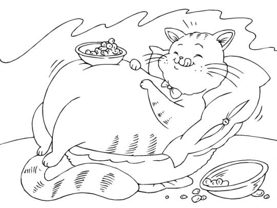 Gato para colorear online