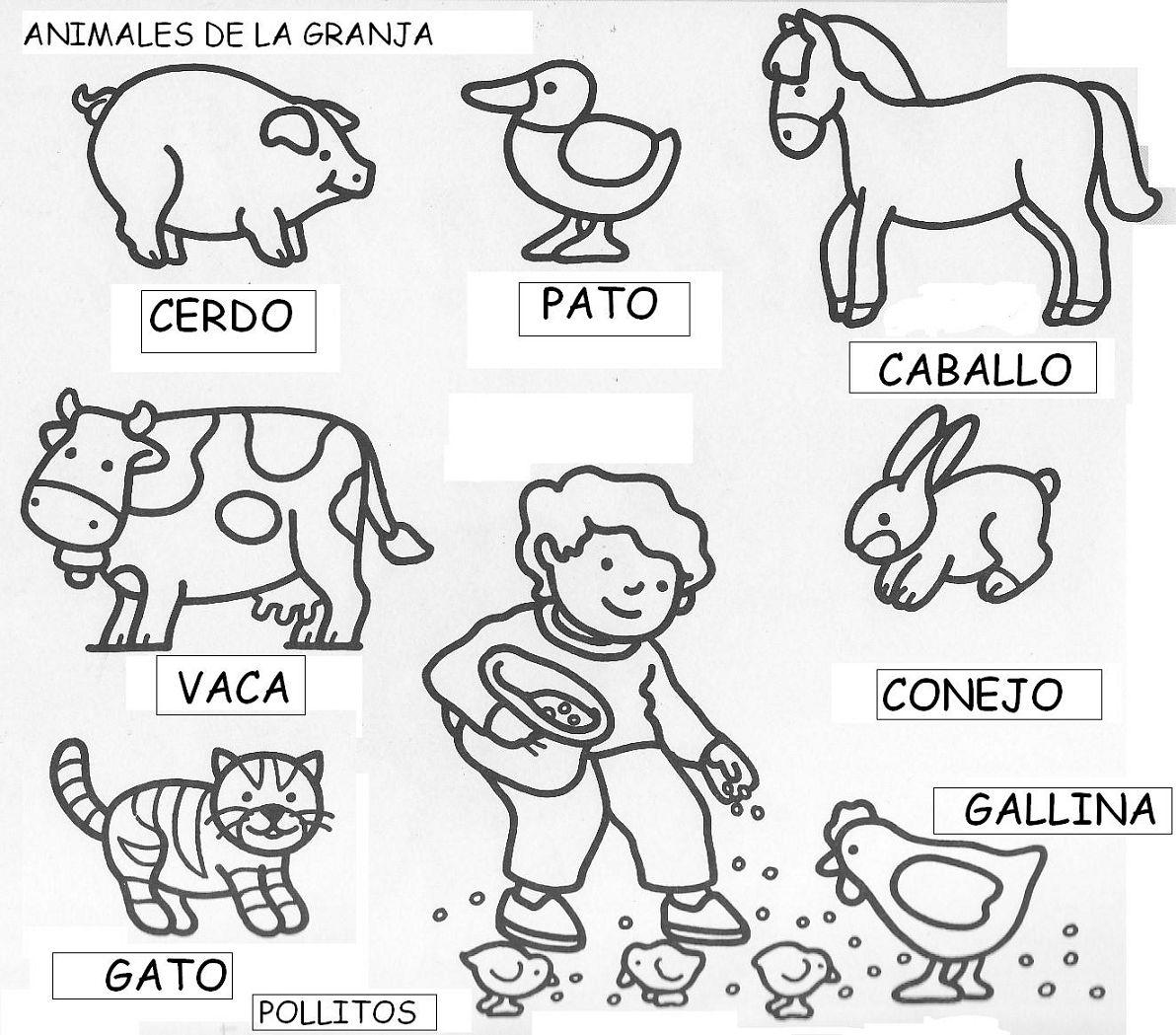 Perfecto Hojas Para Colorear Zoo Imagen - Enmarcado Para Colorear ...