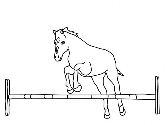 Imagenes de caballos colorear