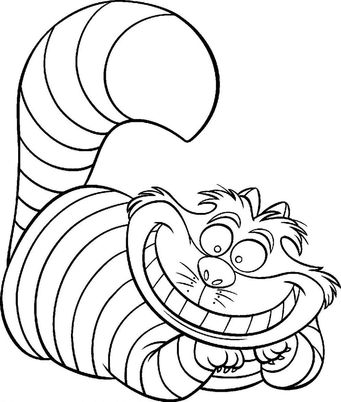 Vistoso Páginas Para Colorear De Un Gato Ilustración - Enmarcado ...