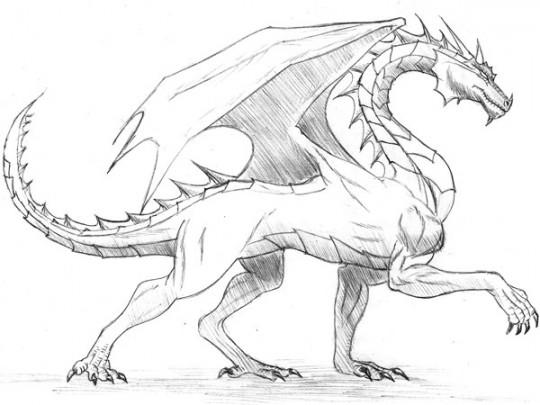 Imagenes para dibujar dragon