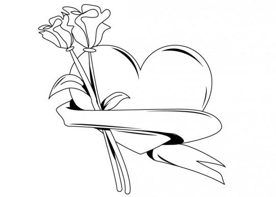Rosas dibujar